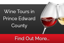 Spotlight Limo Wine Tours